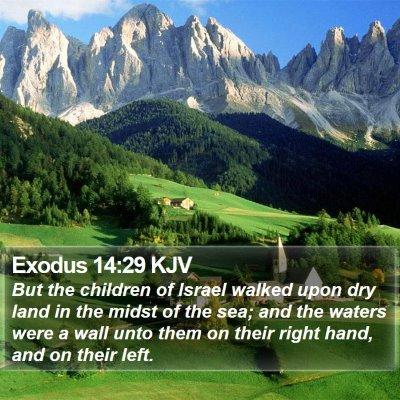 Exodus 14:29 KJV Bible Verse Image