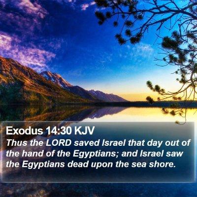 Exodus 14:30 KJV Bible Verse Image