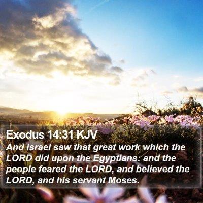 Exodus 14:31 KJV Bible Verse Image