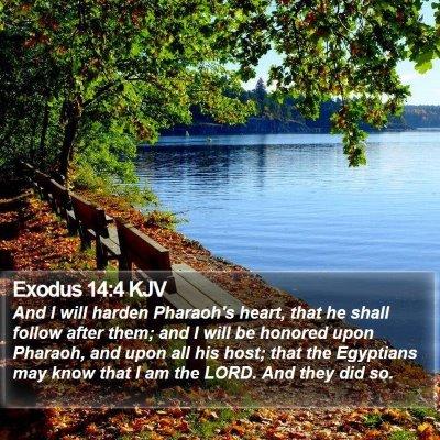 Exodus 14:4 KJV Bible Verse Image