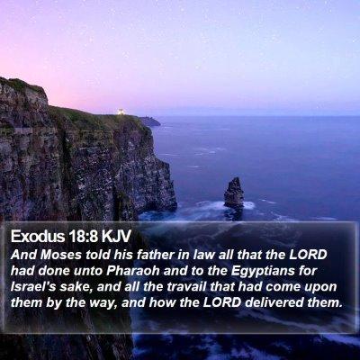 Exodus 18:8 KJV Bible Verse Image