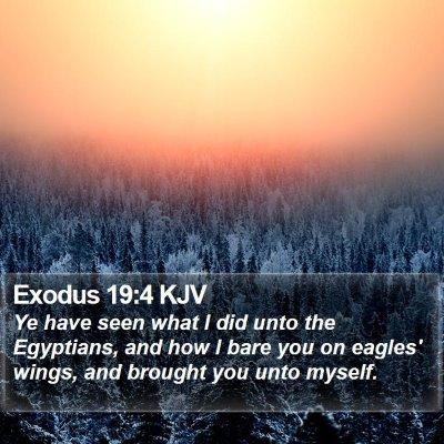 Exodus 19:4 KJV Bible Verse Image