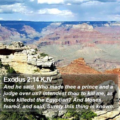 Exodus 2:14 KJV Bible Verse Image