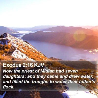 Exodus 2:16 KJV Bible Verse Image