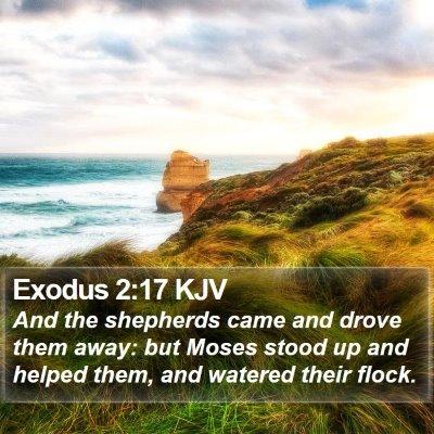 Exodus 2:17 KJV Bible Verse Image