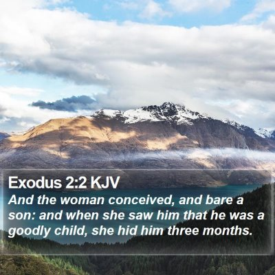 Exodus 2:2 KJV Bible Verse Image