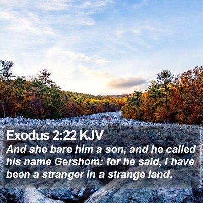 Exodus 2:22 KJV Bible Verse Image