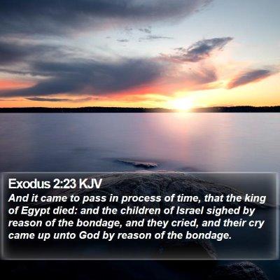 Exodus 2:23 KJV Bible Verse Image