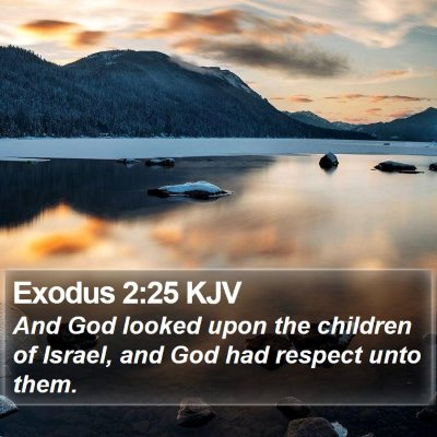 Exodus 2:25 KJV Bible Verse Image