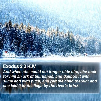 Exodus 2:3 KJV Bible Verse Image