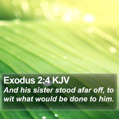 Exodus 2:4 KJV Bible Verse Image