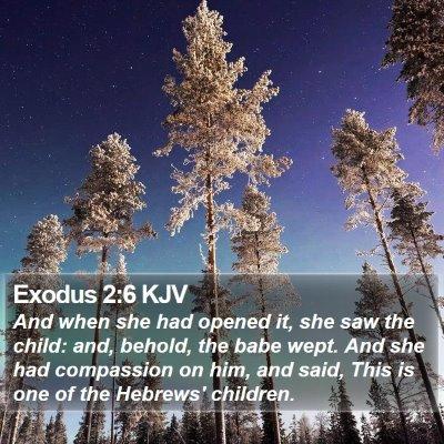 Exodus 2:6 KJV Bible Verse Image