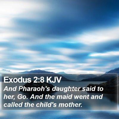Exodus 2:8 KJV Bible Verse Image