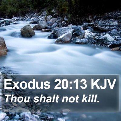 Exodus 20:13 KJV Bible Verse Image