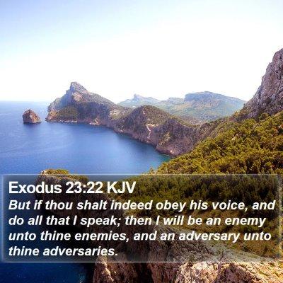 Exodus 23:22 KJV Bible Verse Image