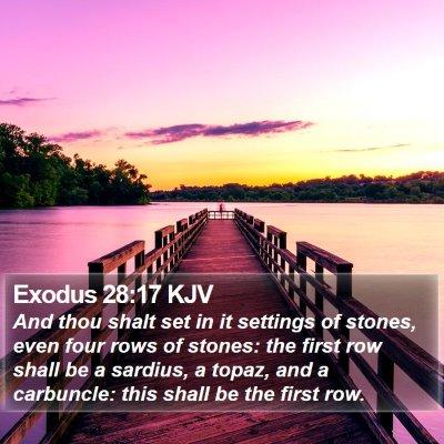 Exodus 28:17 KJV Bible Verse Image