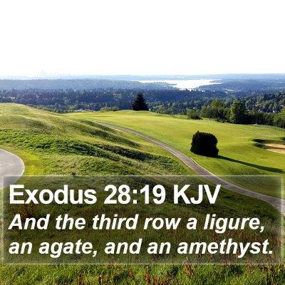 Exodus 28:19 KJV Bible Verse Image
