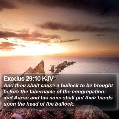 Exodus 29:10 KJV Bible Verse Image
