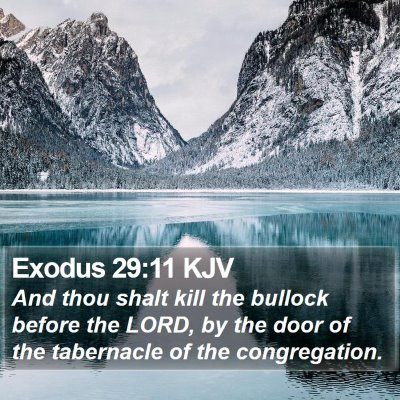 Exodus 29:11 KJV Bible Verse Image