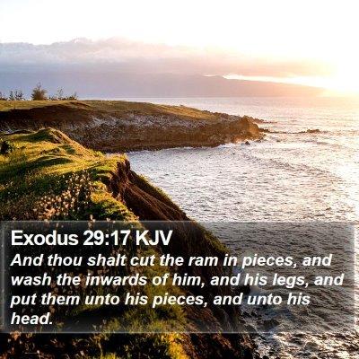 Exodus 29:17 KJV Bible Verse Image