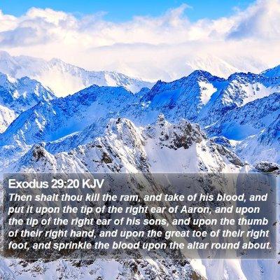 Exodus 29:20 KJV Bible Verse Image