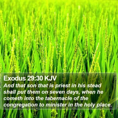 Exodus 29:30 KJV Bible Verse Image