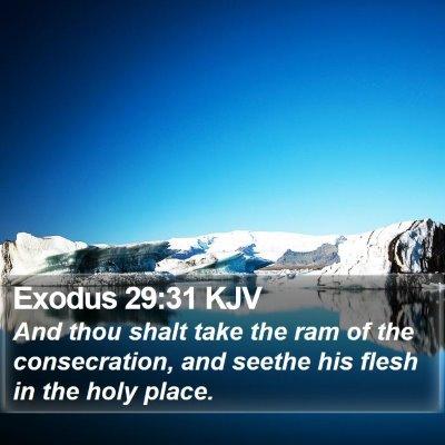 Exodus 29:31 KJV Bible Verse Image
