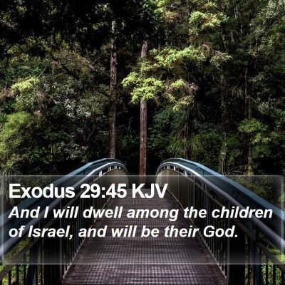 Exodus 29:45 KJV Bible Verse Image