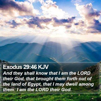 Exodus 29:46 KJV Bible Verse Image