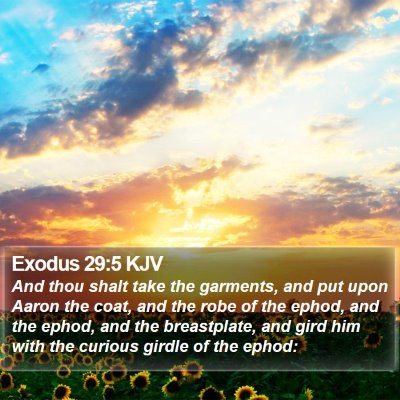 Exodus 29:5 KJV Bible Verse Image