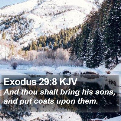 Exodus 29:8 KJV Bible Verse Image
