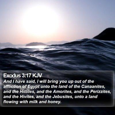 Exodus 3:17 KJV Bible Verse Image