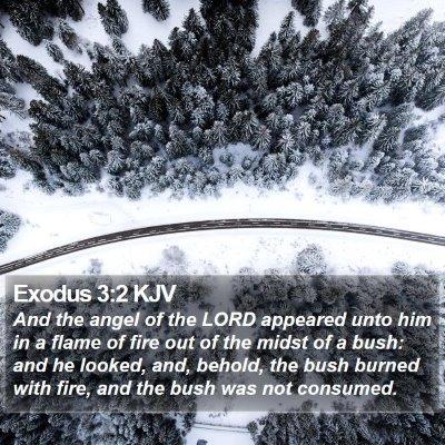 Exodus 3:2 KJV Bible Verse Image