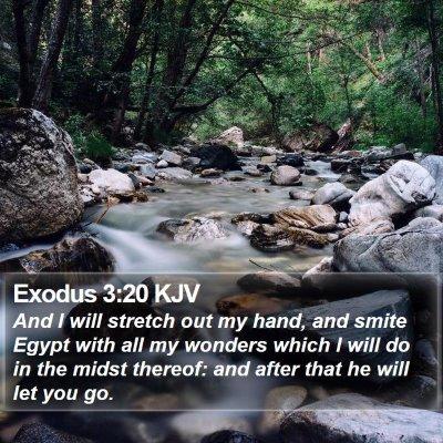 Exodus 3:20 KJV Bible Verse Image