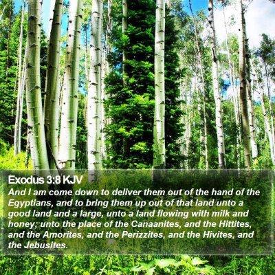 Exodus 3:8 KJV Bible Verse Image