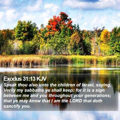 Exodus 31:13 KJV Bible Verse Image