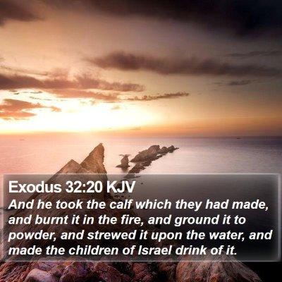 Exodus 32:20 KJV Bible Verse Image