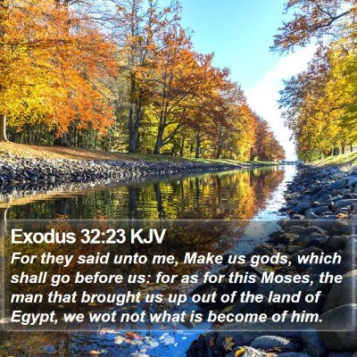 Exodus 32:23 KJV Bible Verse Image