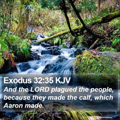 Exodus 32:35 KJV Bible Verse Image