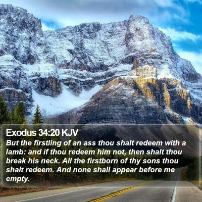 Exodus 34:20 KJV Bible Verse Image