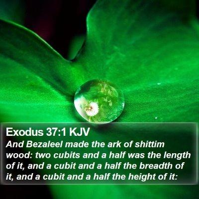 Exodus 37:1 KJV Bible Verse Image