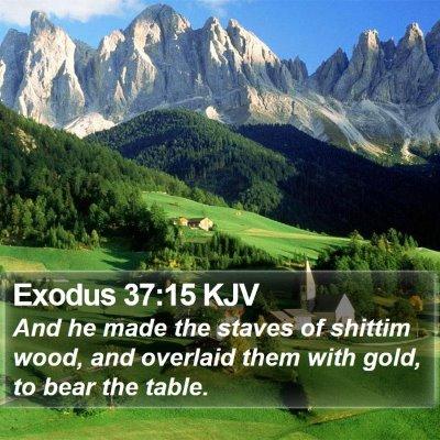 Exodus 37:15 KJV Bible Verse Image