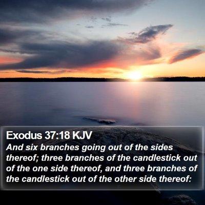 Exodus 37:18 KJV Bible Verse Image