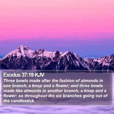 Exodus 37:19 KJV Bible Verse Image