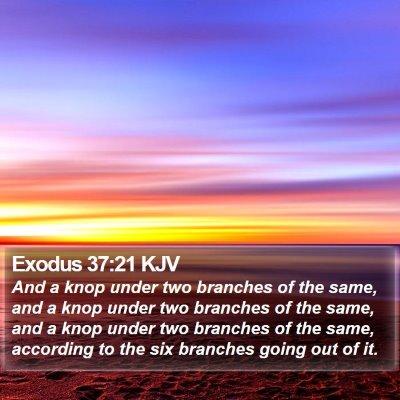 Exodus 37:21 KJV Bible Verse Image