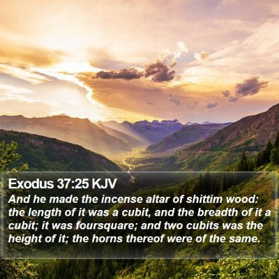 Exodus 37:25 KJV Bible Verse Image
