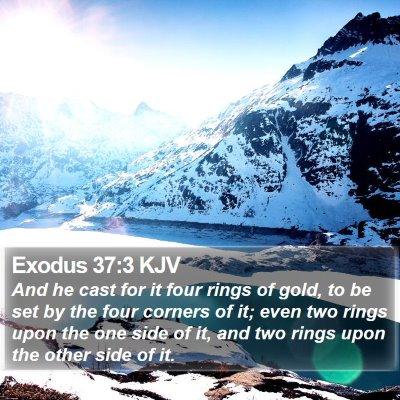 Exodus 37:3 KJV Bible Verse Image