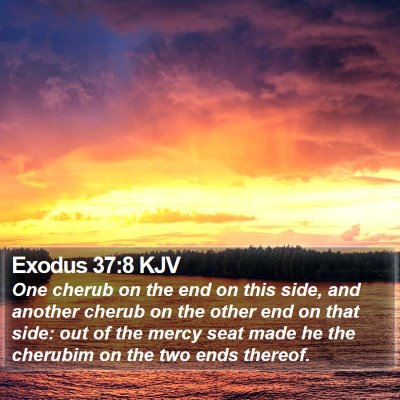 Exodus 37:8 KJV Bible Verse Image
