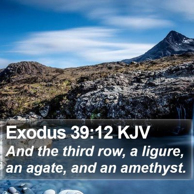 Exodus 39:12 KJV Bible Verse Image
