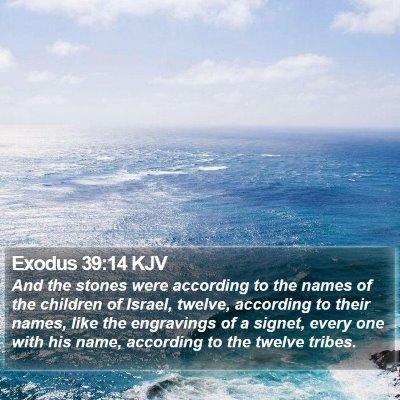 Exodus 39:14 KJV Bible Verse Image